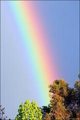 Gods rainbow