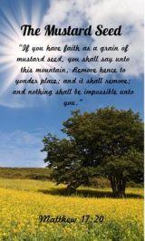 mustard-seed-tree