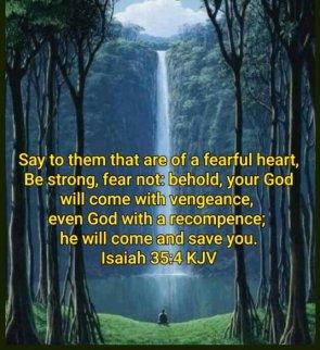 Fearful heart2