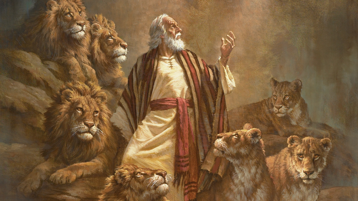 Image result for lions saved christians
