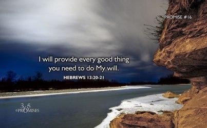 I will provide