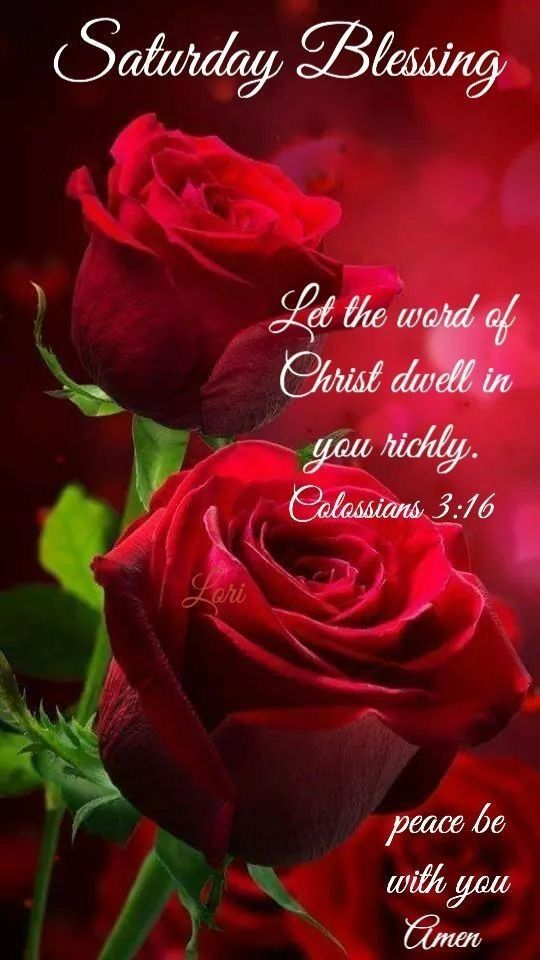 Let the word of Christ